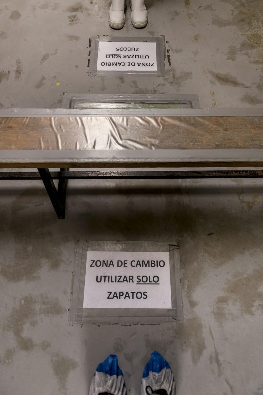 Ana Matos - Nucleares 2015 - Zorita-31