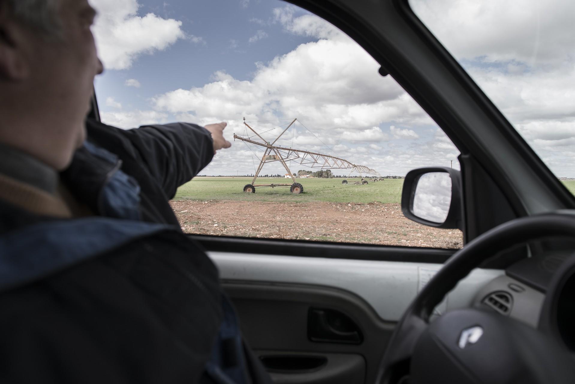 Ana Matos - Robos agrarios 2015 - 11