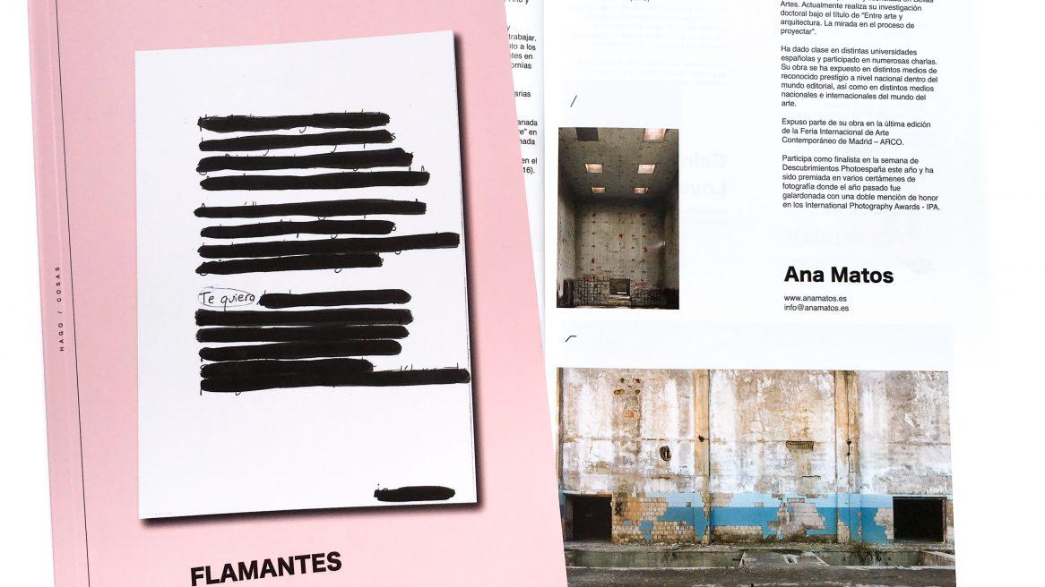 FLAMANTES Libro de Artistas
