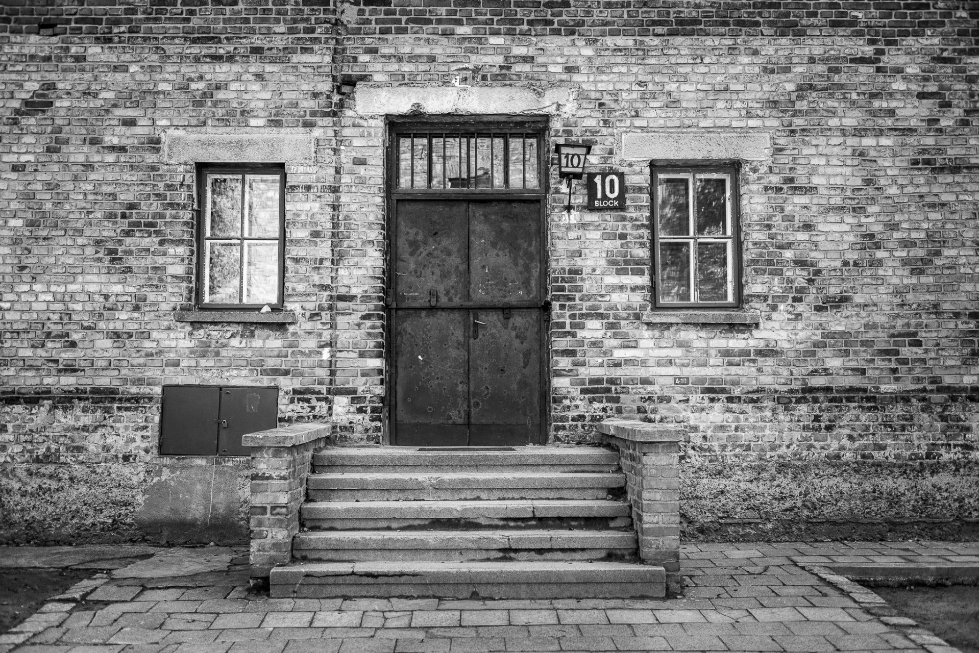 Ana Matos - Auschwitz 2015-03