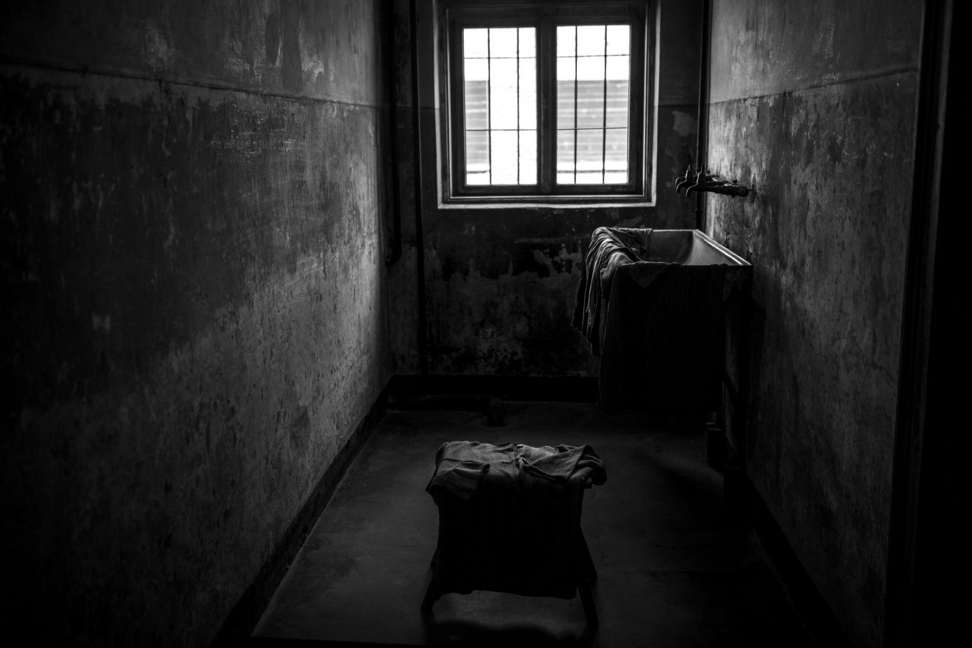 Ana Matos - Auschwitz 2015-04