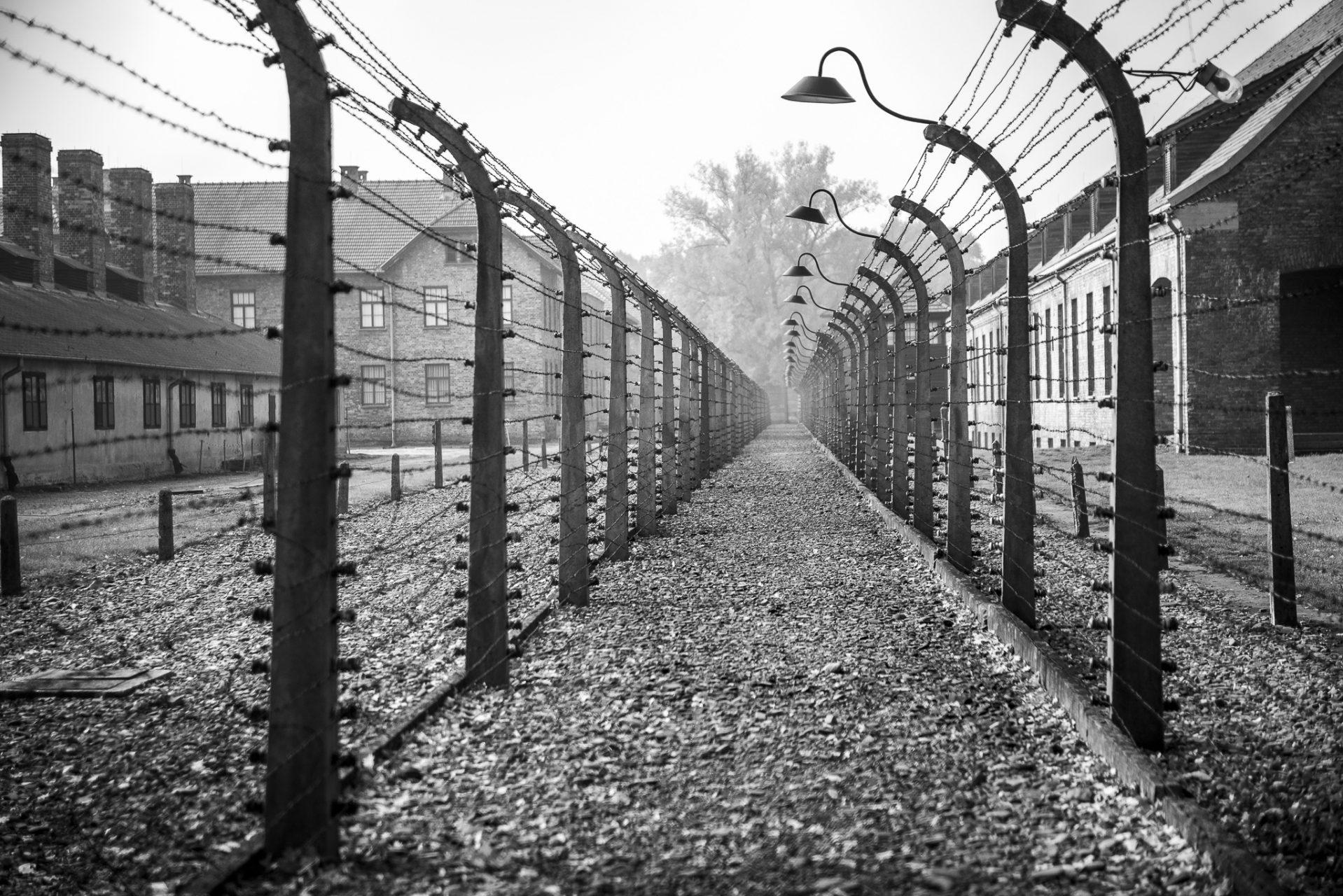 Ana Matos - Auschwitz 2015-05