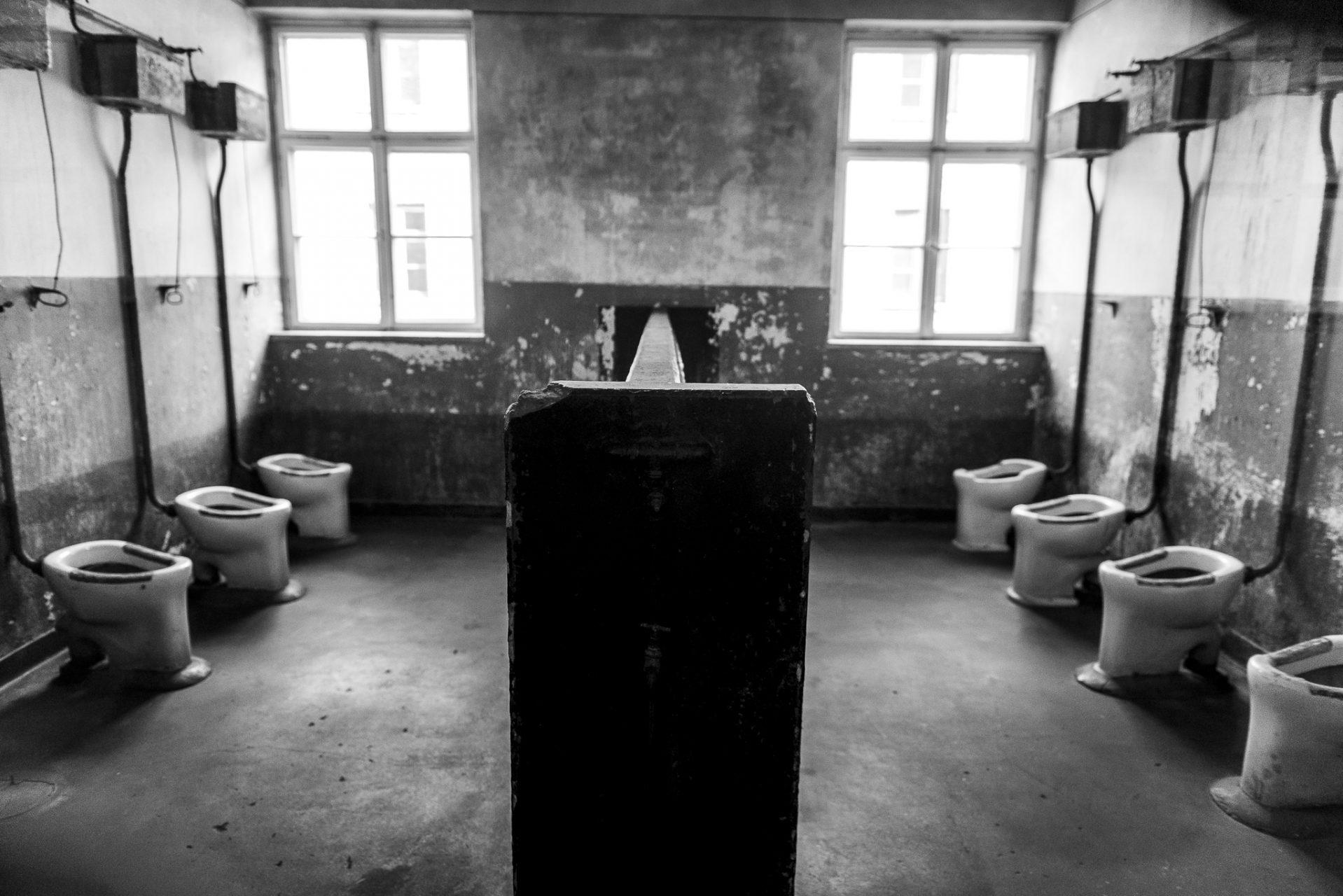 Ana Matos - Auschwitz 2015-09