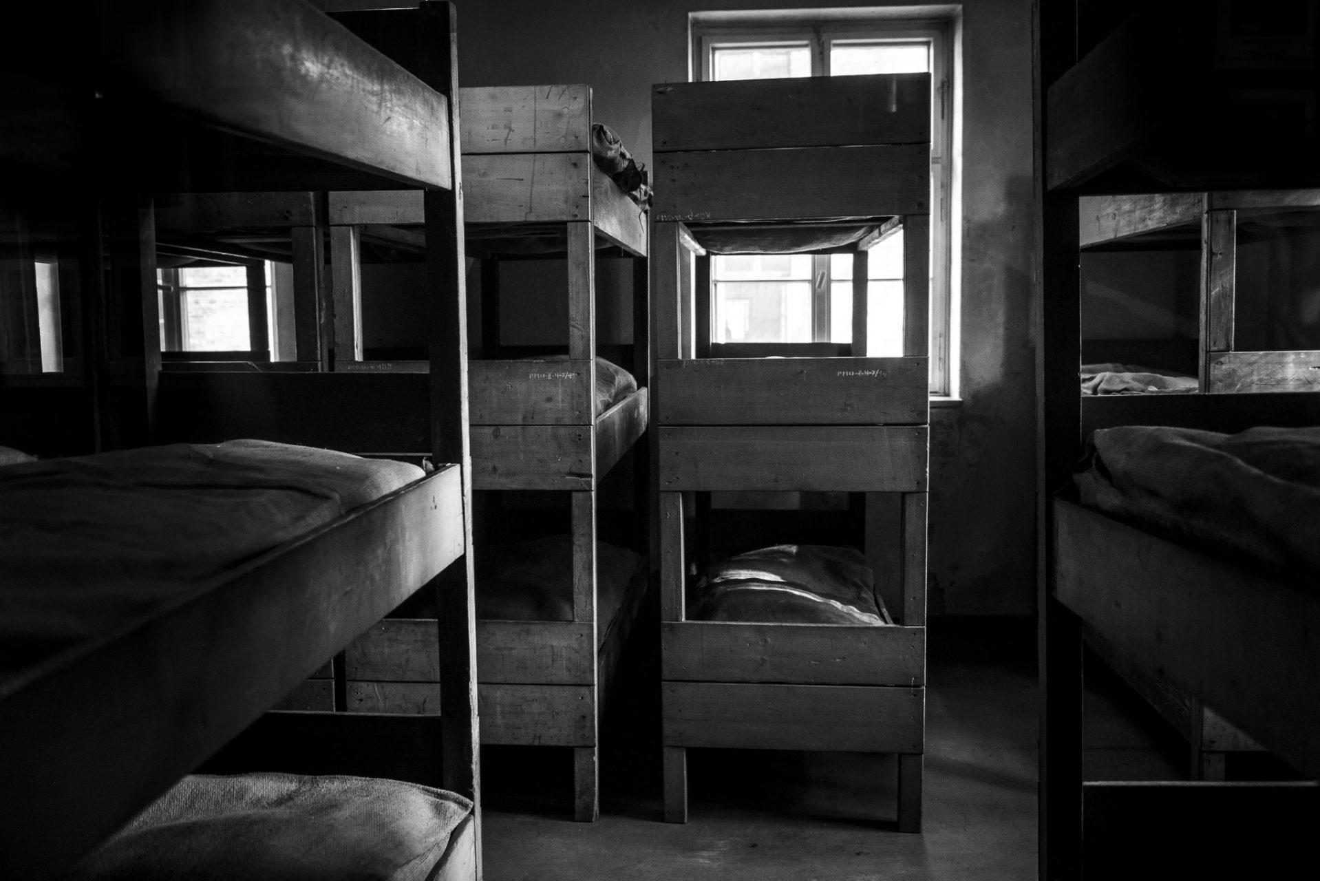 Ana Matos - Auschwitz 2015-10