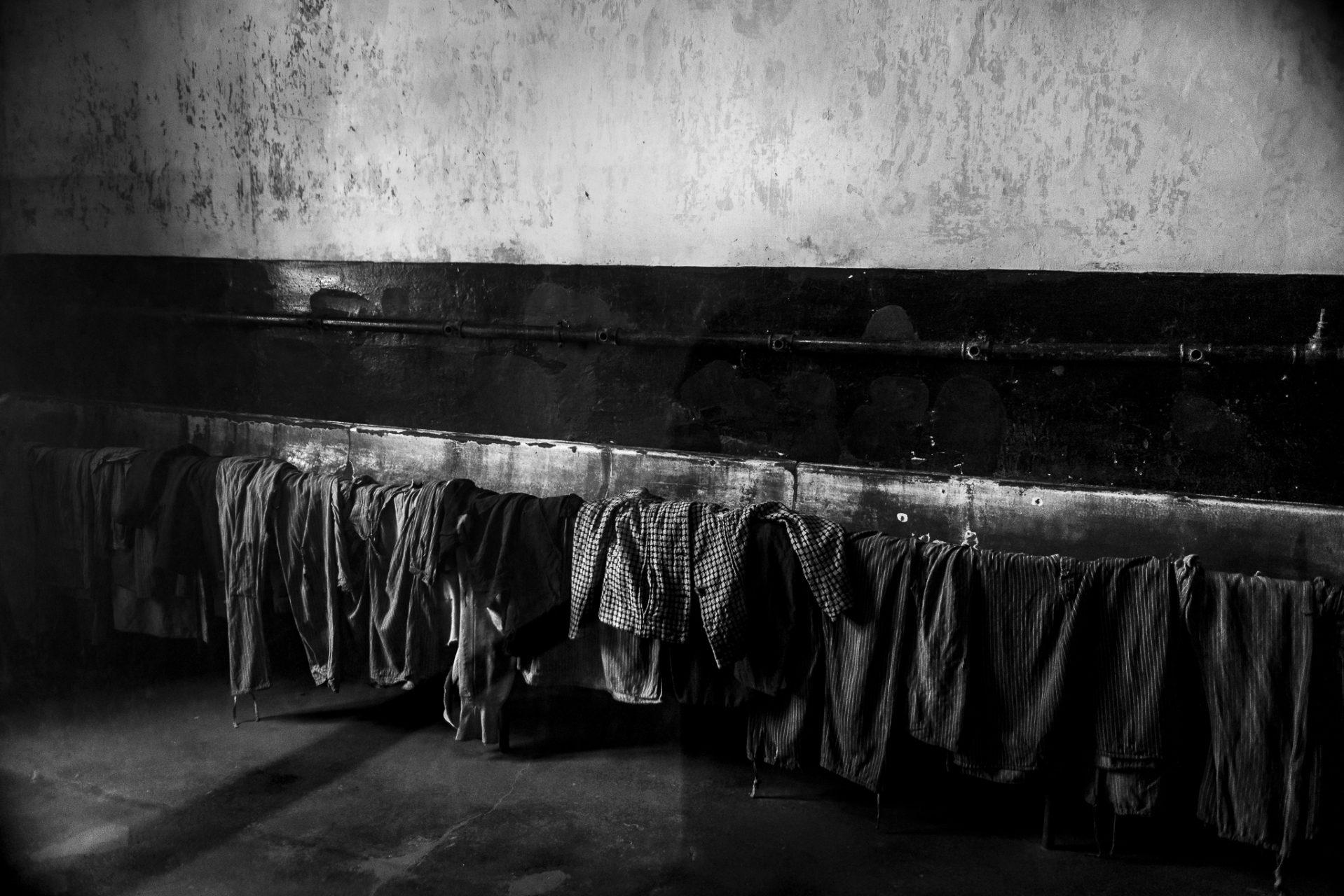 Ana Matos - Auschwitz 2015-12