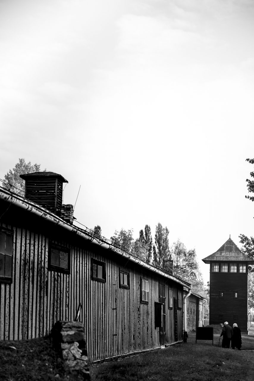 Ana Matos - Auschwitz 2015-14