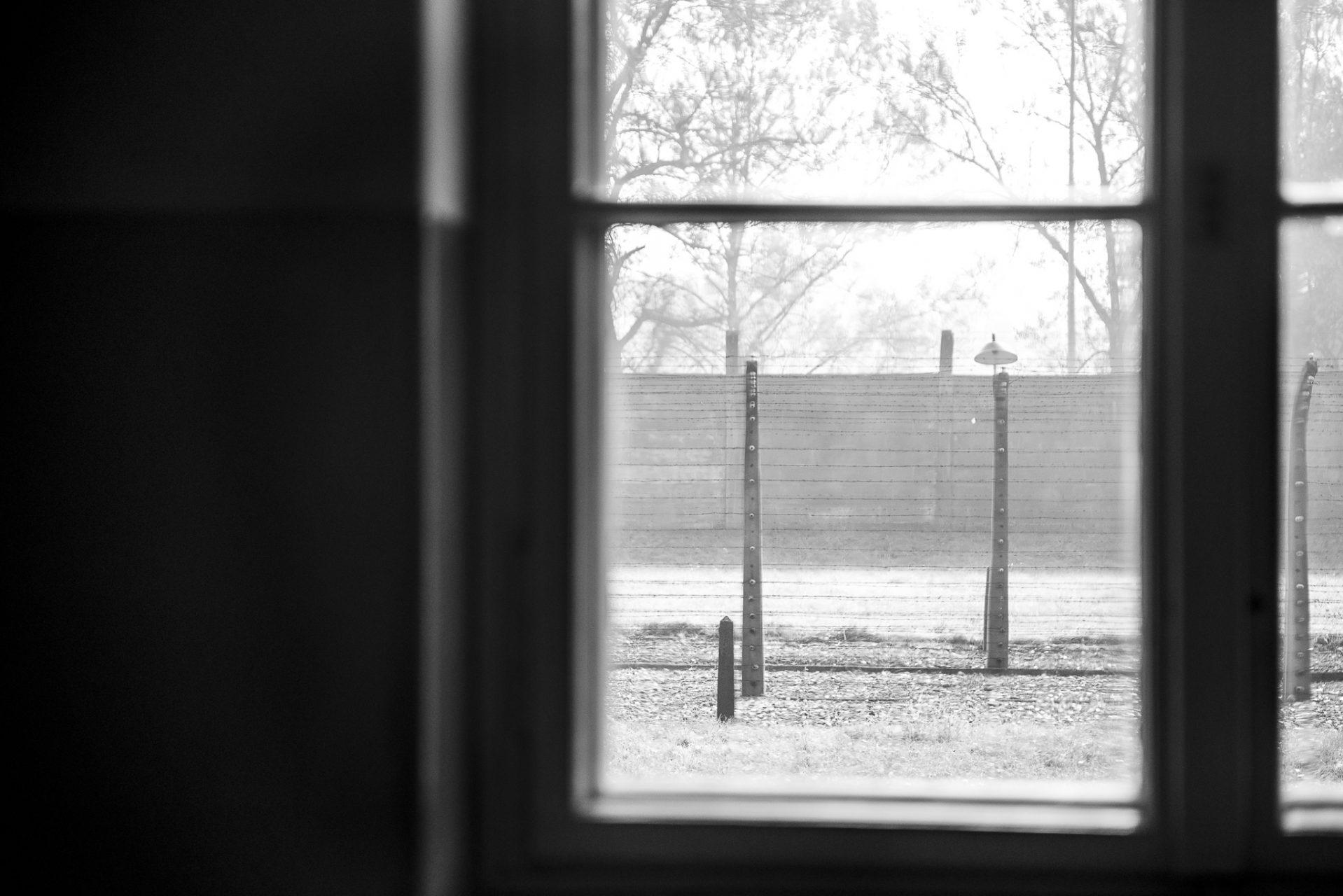 Ana Matos - Auschwitz 2015-15