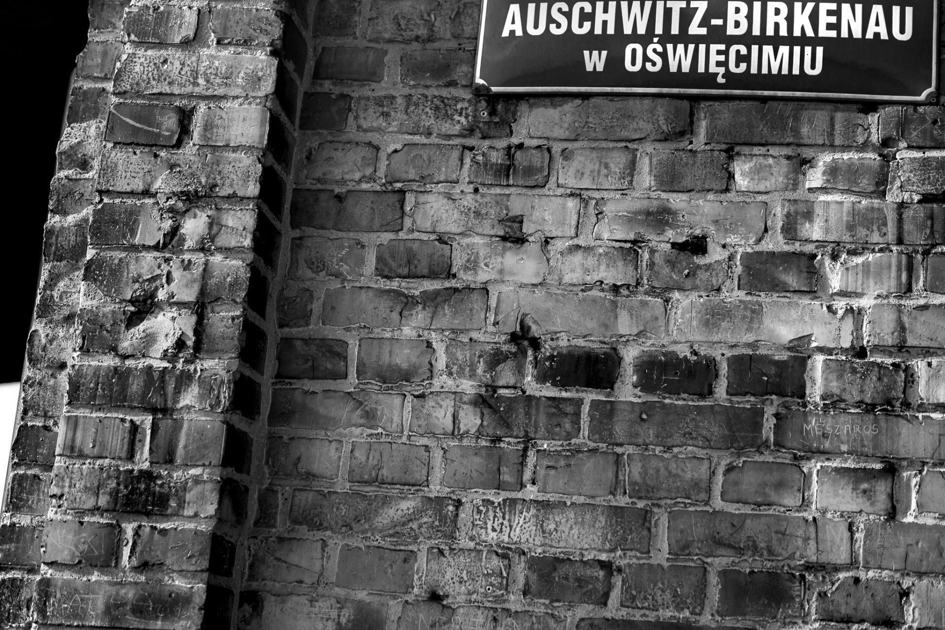 Ana Matos - Auschwitz 2015-19