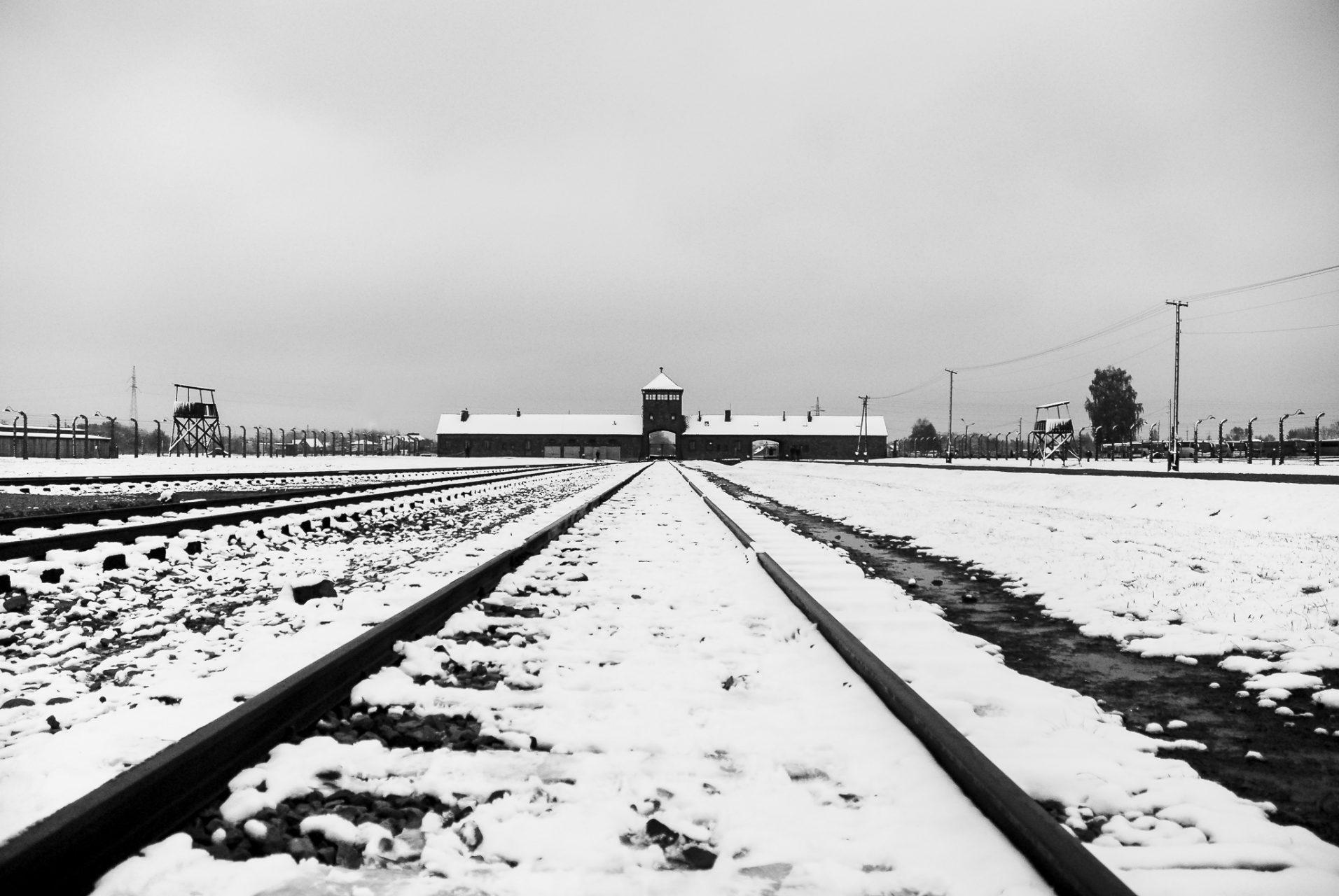 Ana Matos - Auschwitz 2015-20