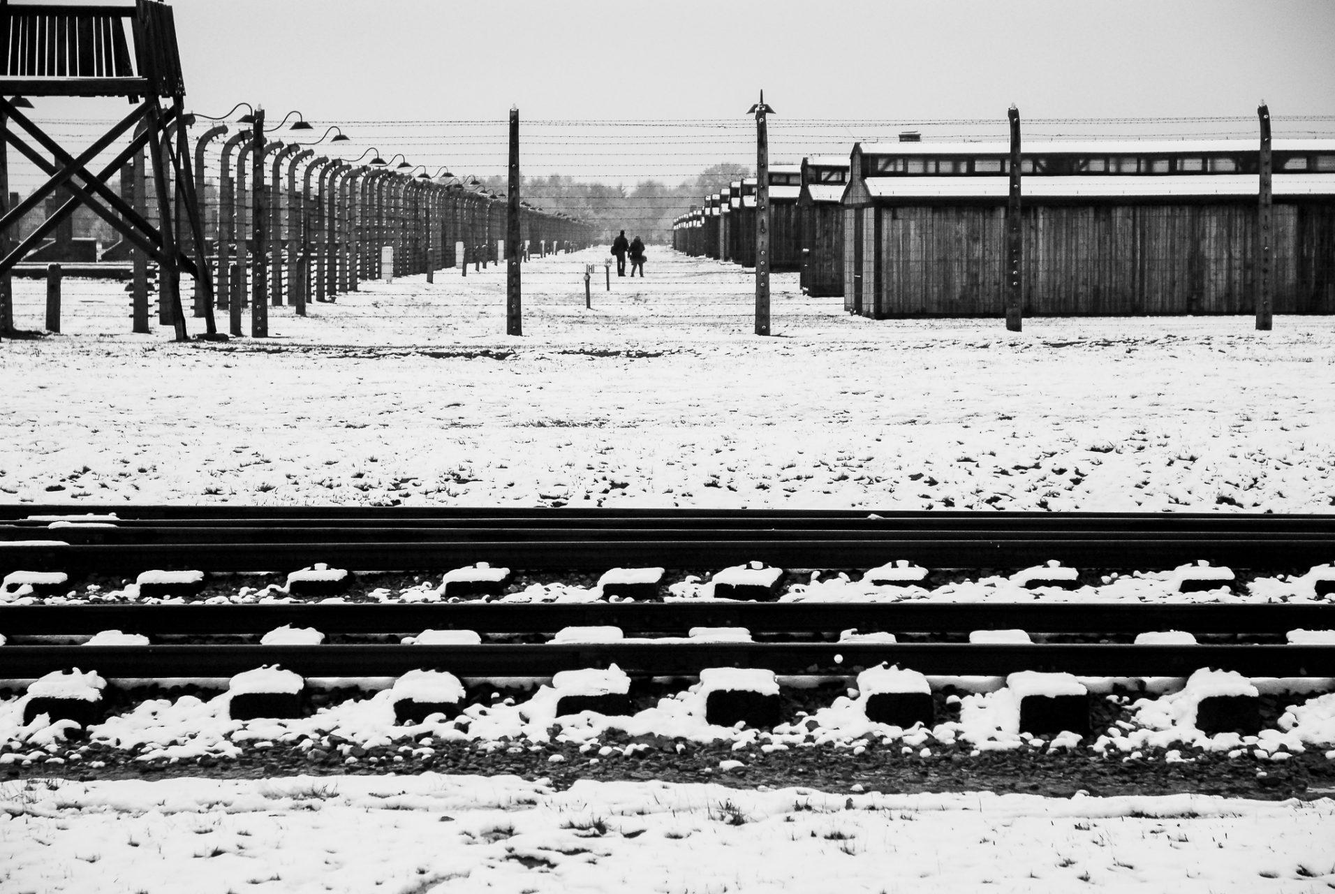 Ana Matos - Auschwitz 2015-21