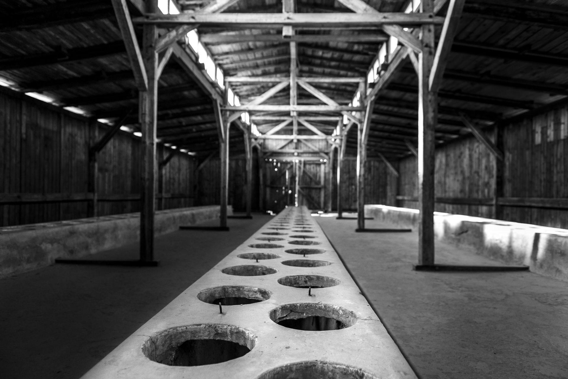 Ana Matos - Auschwitz 2015-24