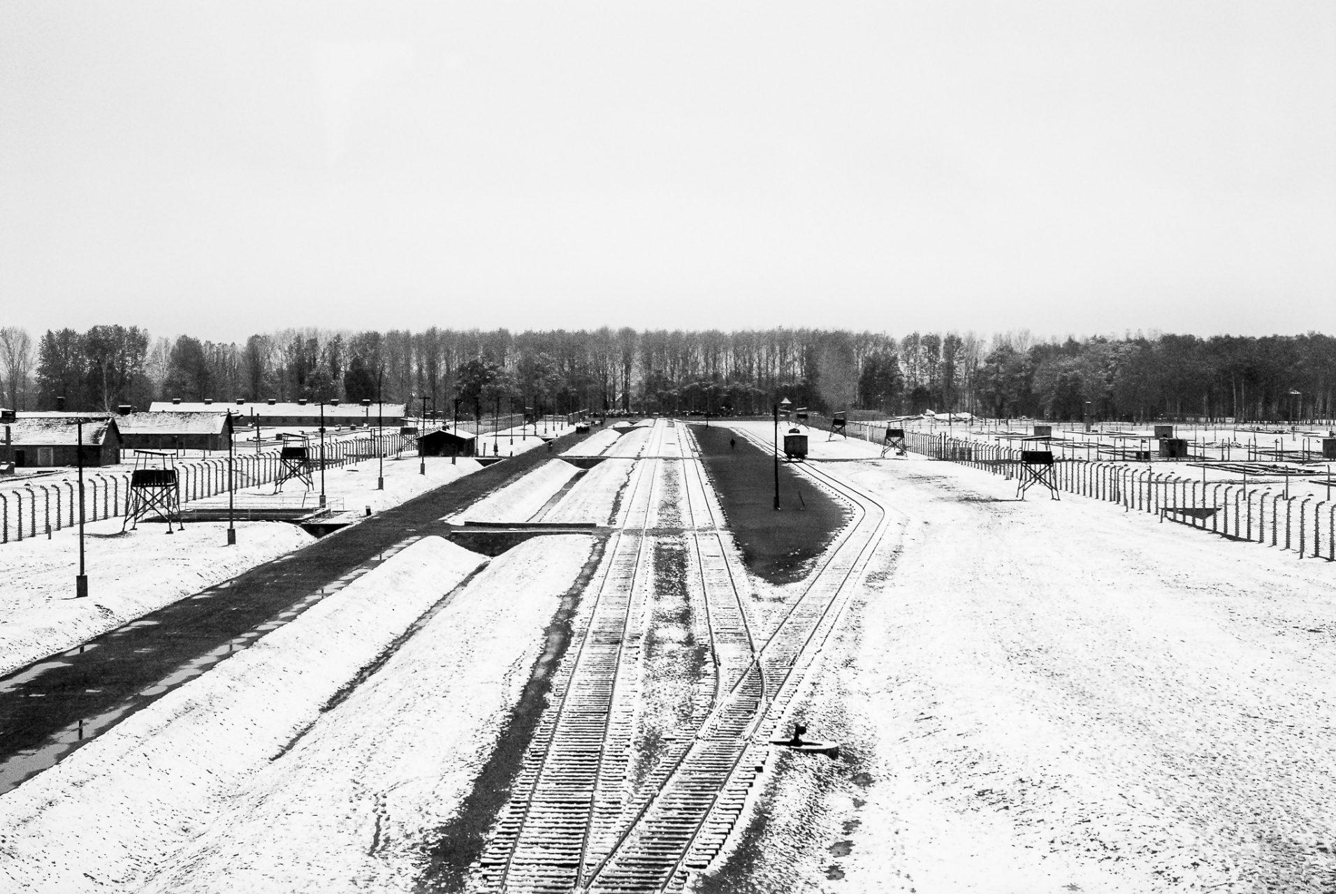 Ana Matos - Auschwitz 2015-29