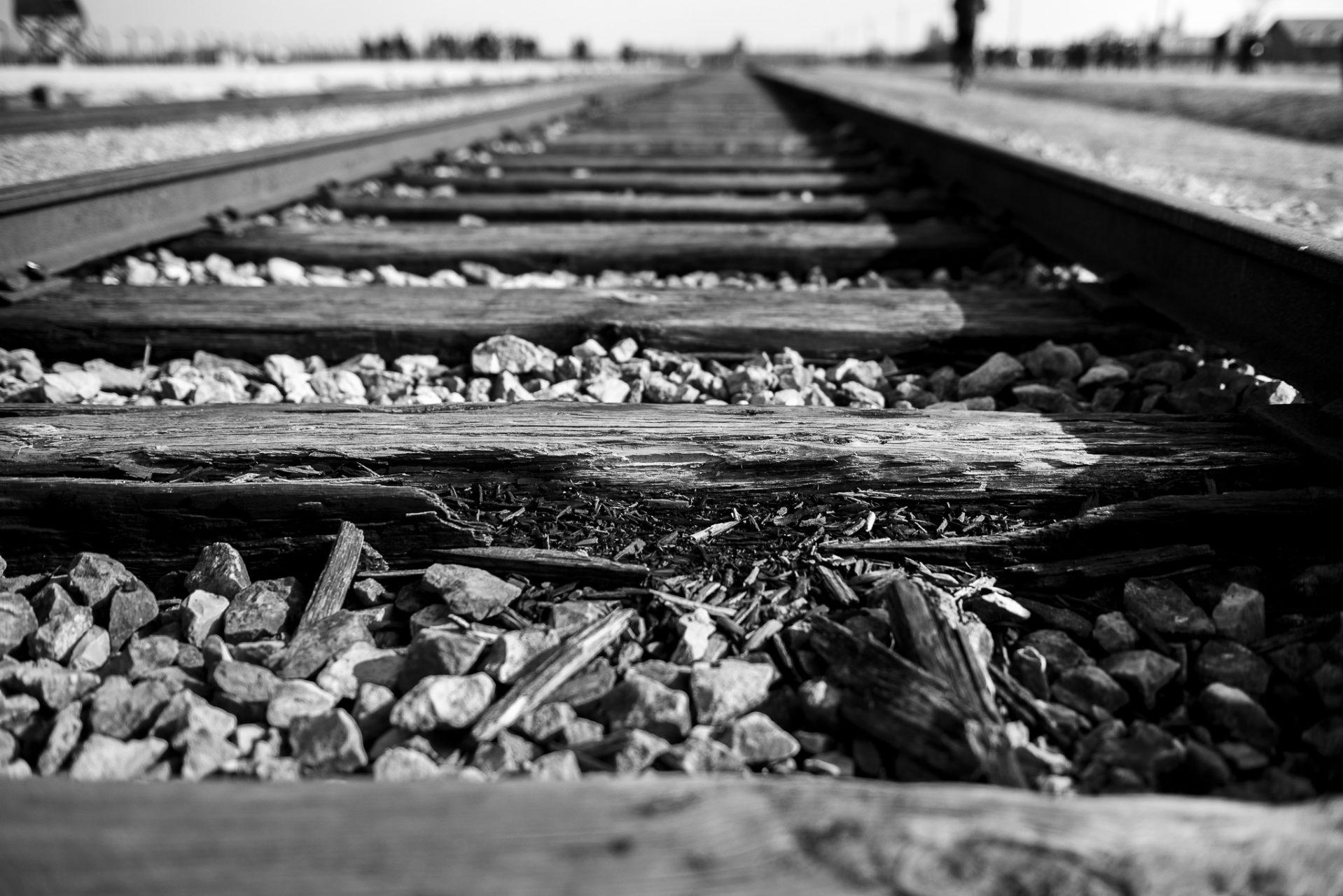 Ana Matos - Auschwitz 2015-31