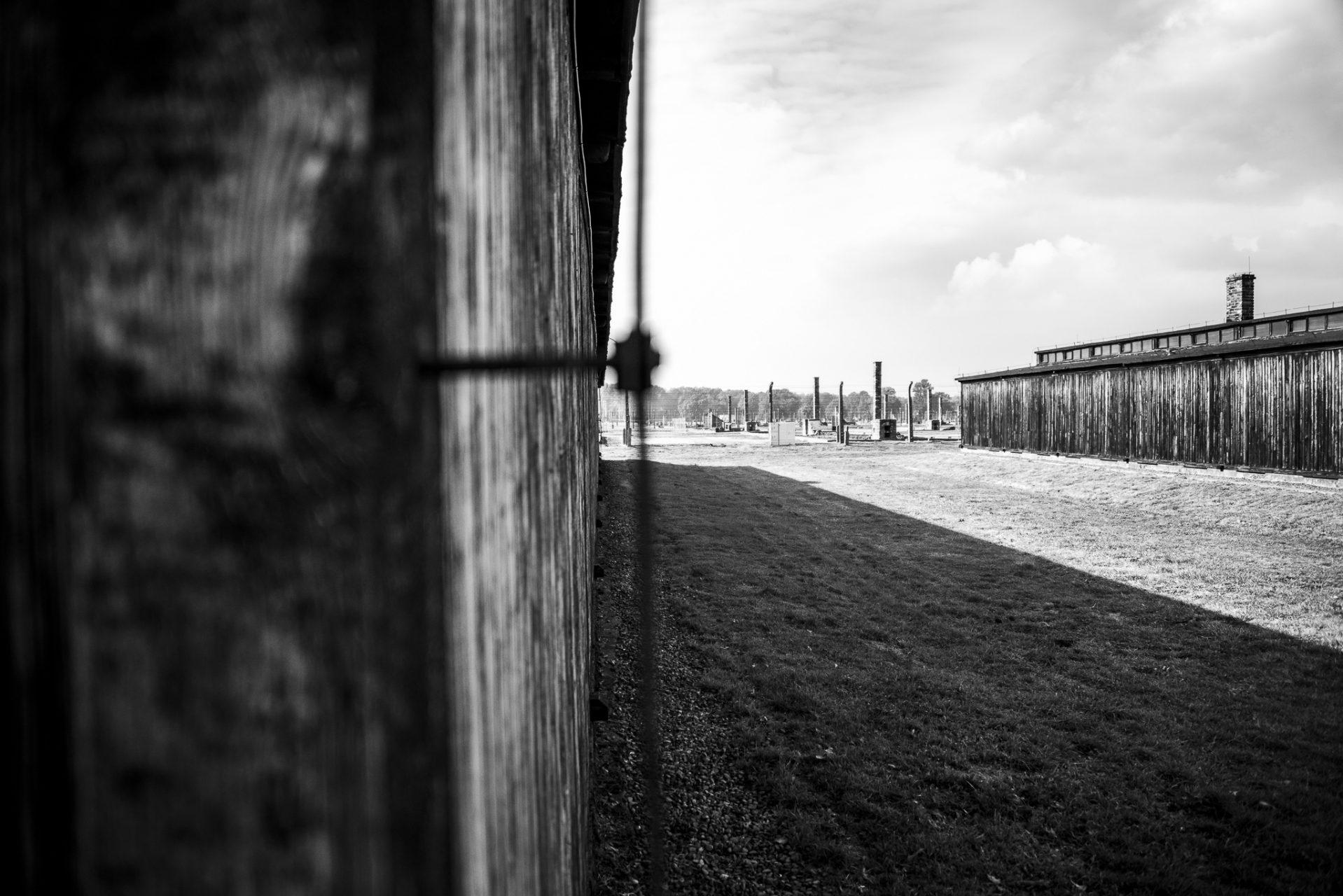 Ana Matos - Auschwitz 2015-33