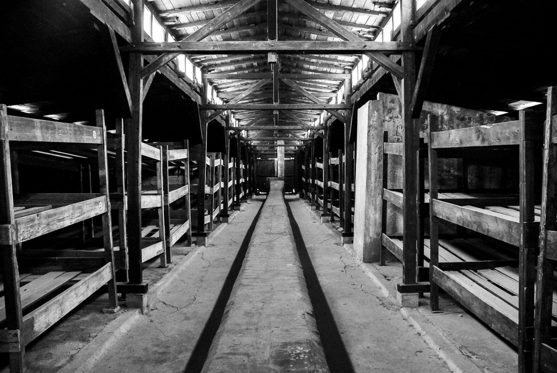 Ana Matos - Auschwitz 2015-34