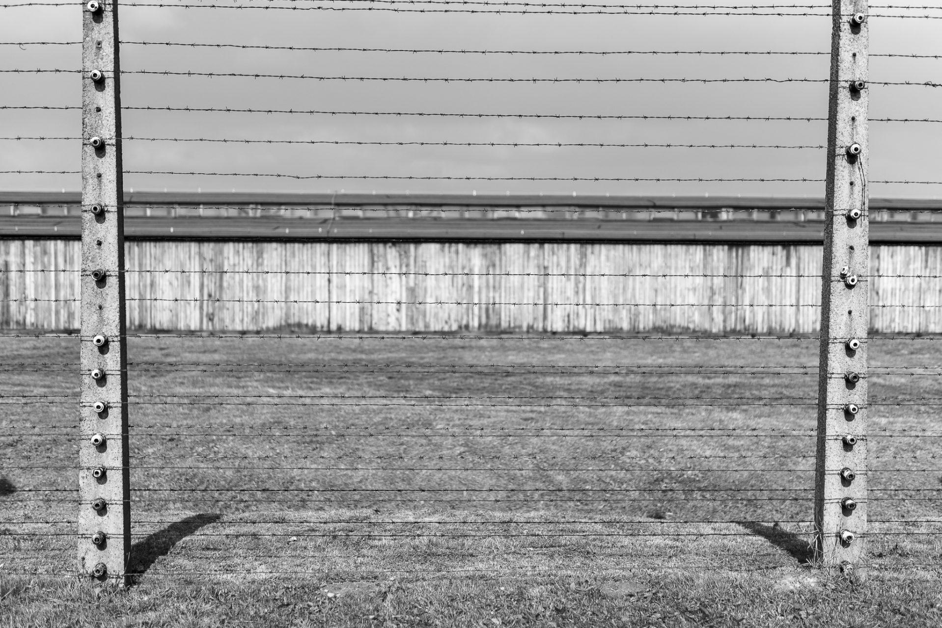 Ana Matos - Auschwitz 2015-38