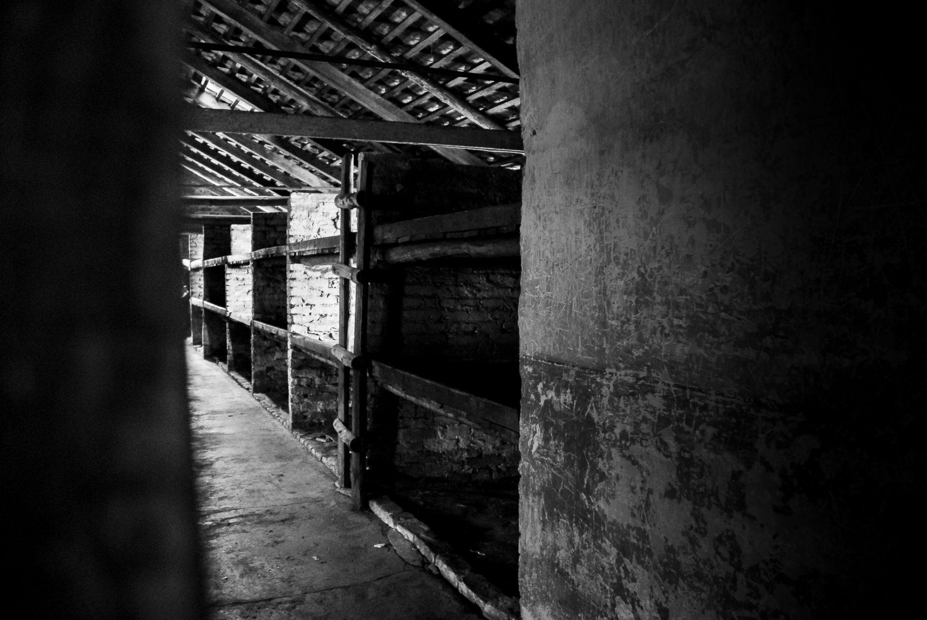 Ana Matos - Auschwitz 2015-39