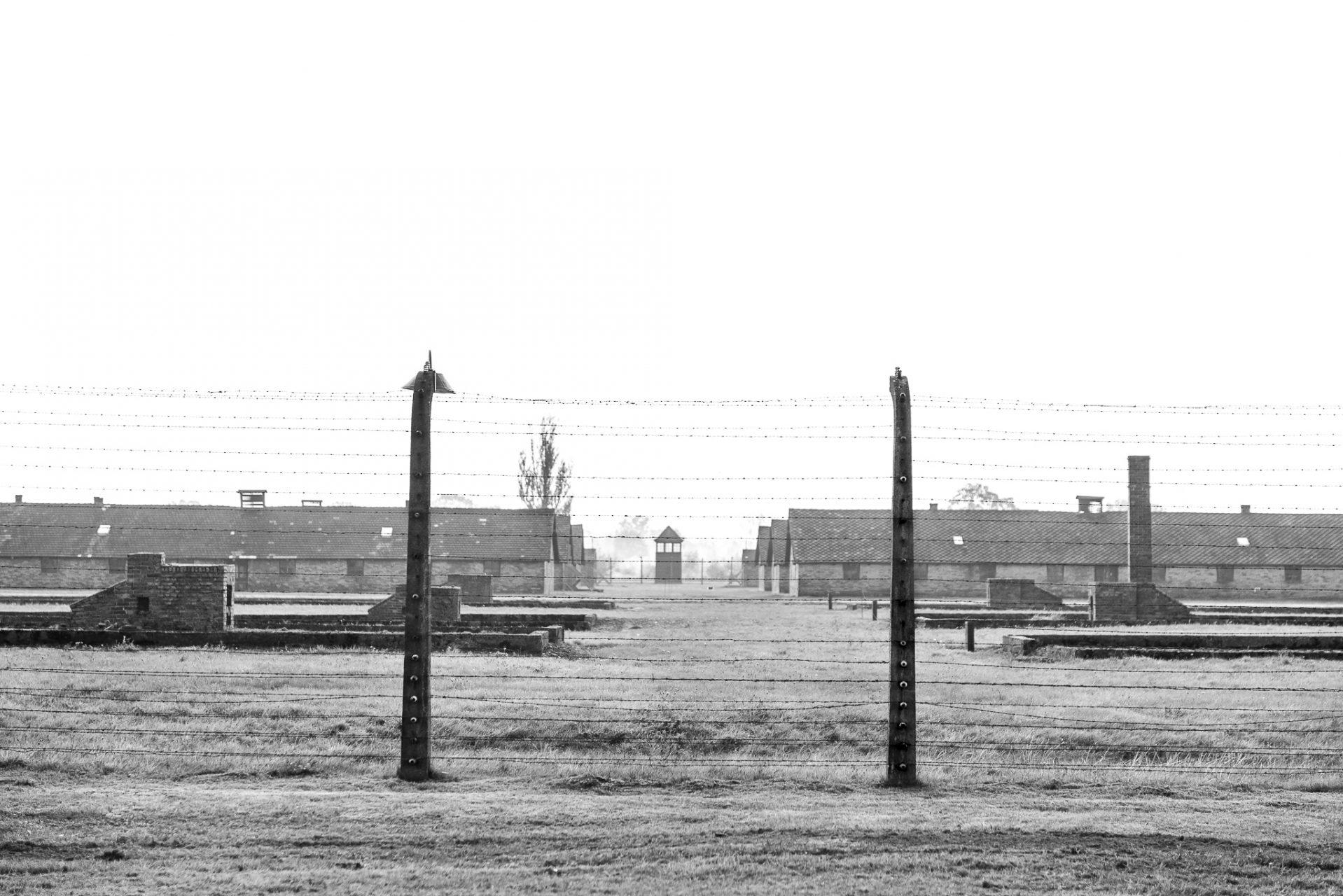 Ana Matos - Auschwitz 2015-40