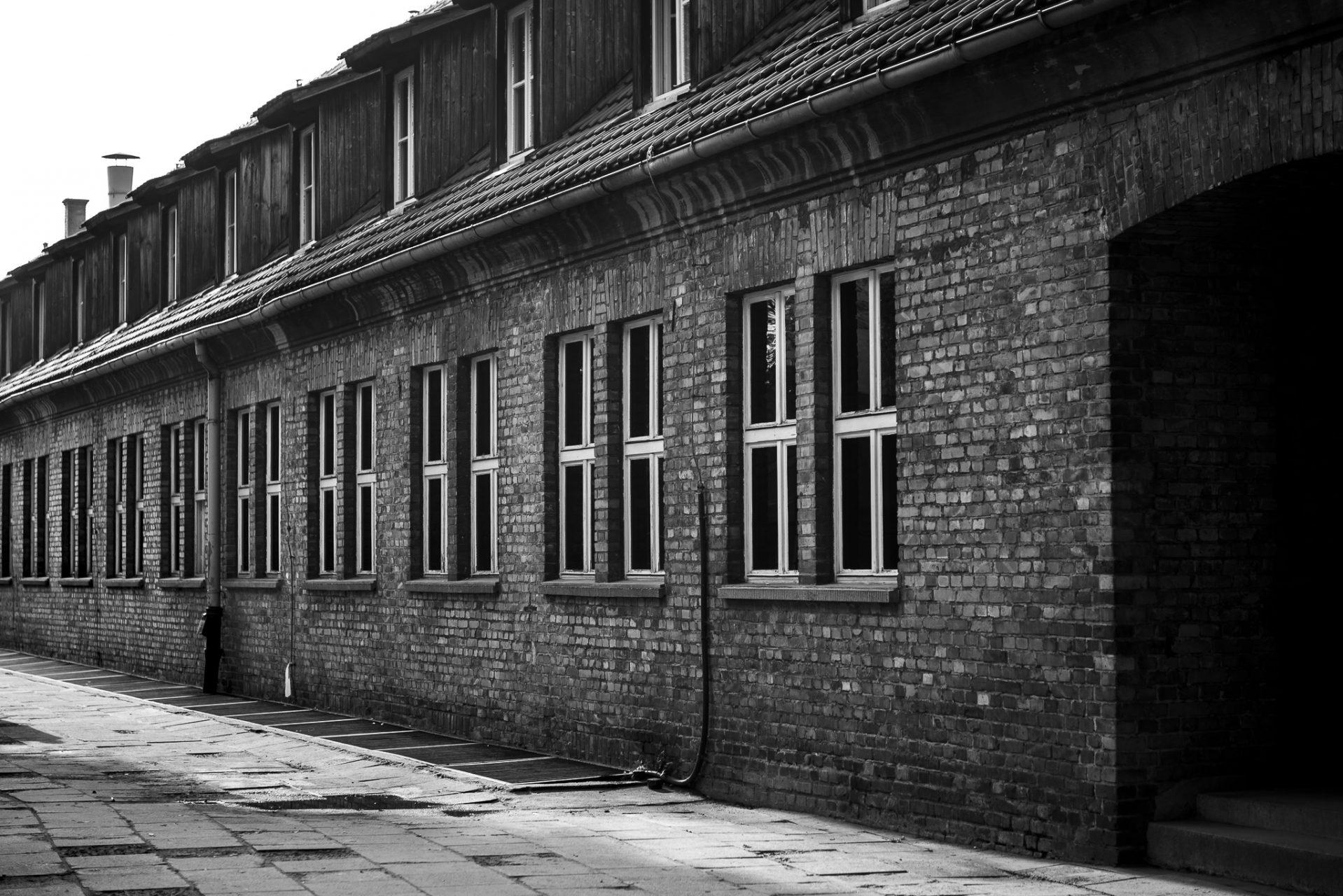 Ana Matos - Auschwitz 2015-41