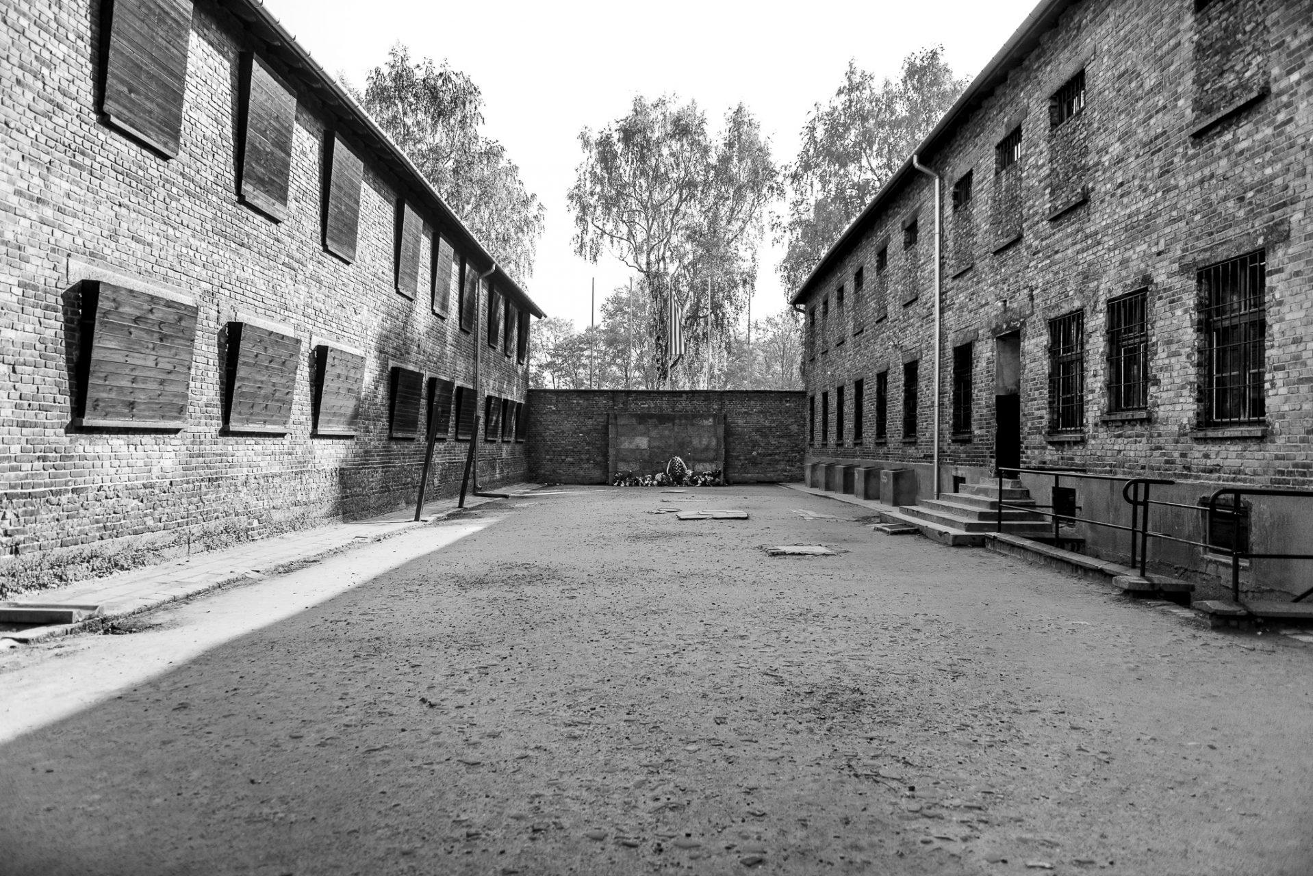 Ana Matos - Auschwitz 2015-43