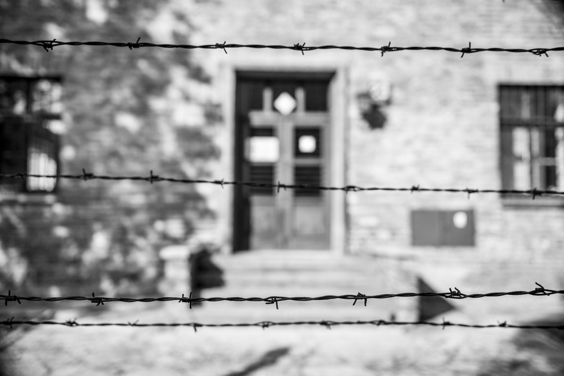 Ana Matos - Auschwitz 2015-45