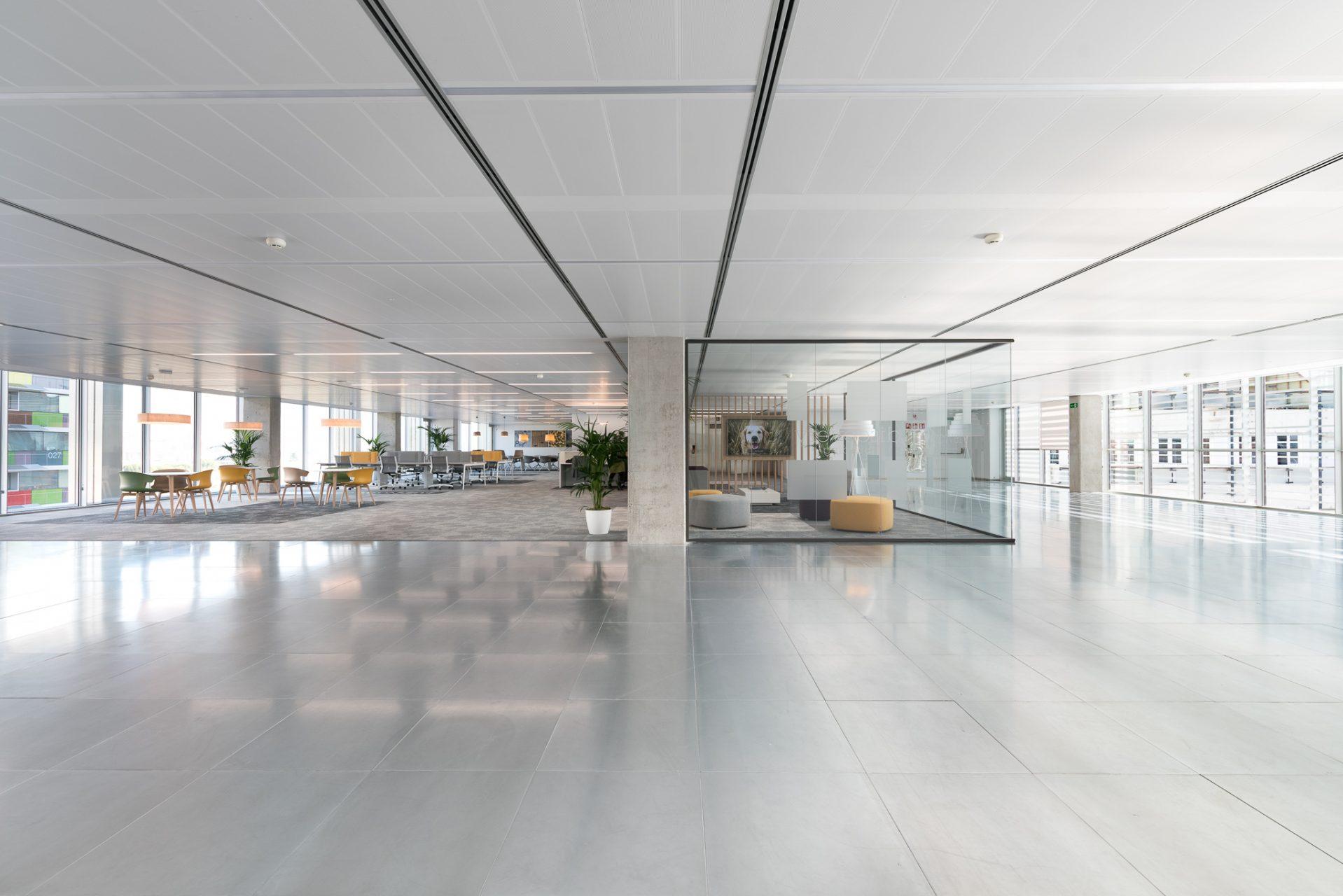 Ana Matos-Discovery Building-web-02